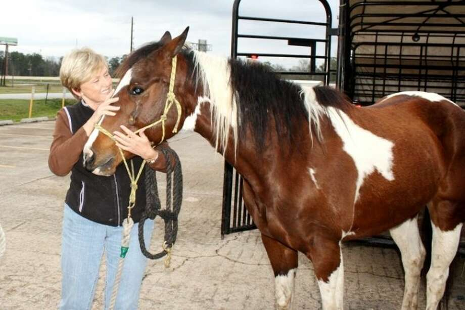 Kat, a 6-year-old quarter horse, nuzzles up to its owner, Anita Lee, after the two were reunited Tuesday night, Feb. 12. The horse, its trailer and the truck pulling them were stolen from Tractor Supply in Porter on Feb. 8.