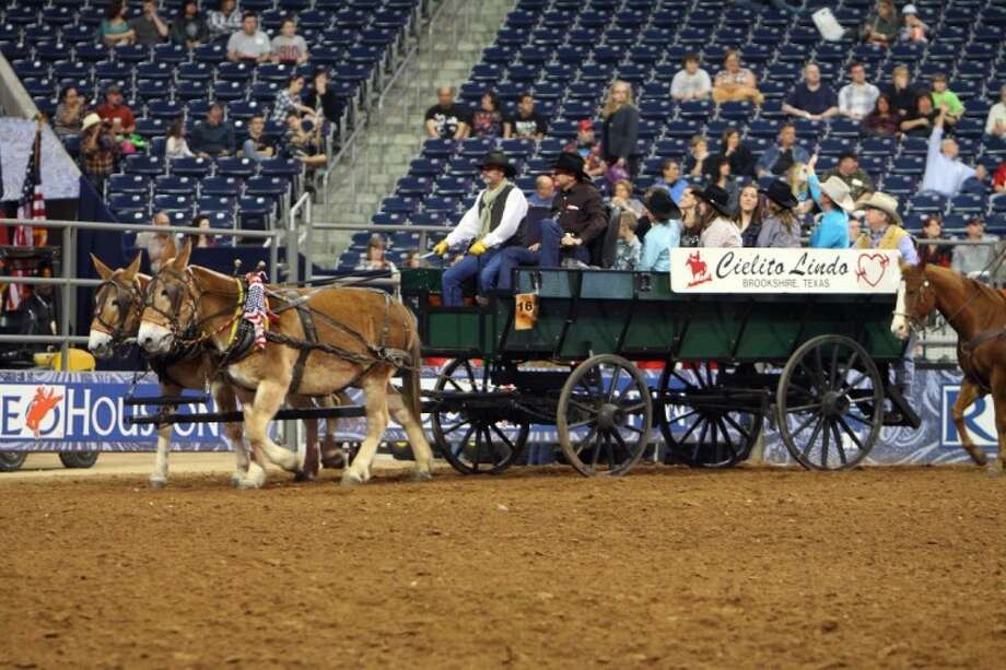 Members of the Waller County go Texan committee ride in the grand entry at the RodeoHouston in recognition of Waller County day at the Houston Livestock Show and Rodeo. The wagon is owned by Bill Fry of Field Store, who is a member of the grand entry committee and the regional manager for Severn Trent in Brookshire.