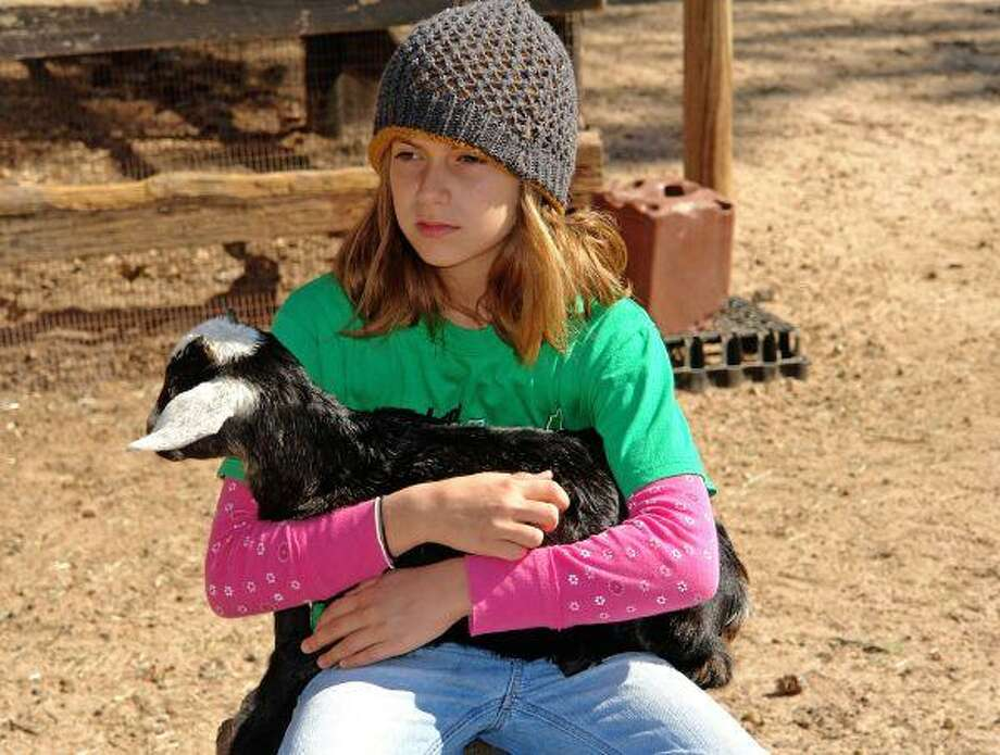Children can interact with a variety of animals at the 7 Acre Wood petting zoo.