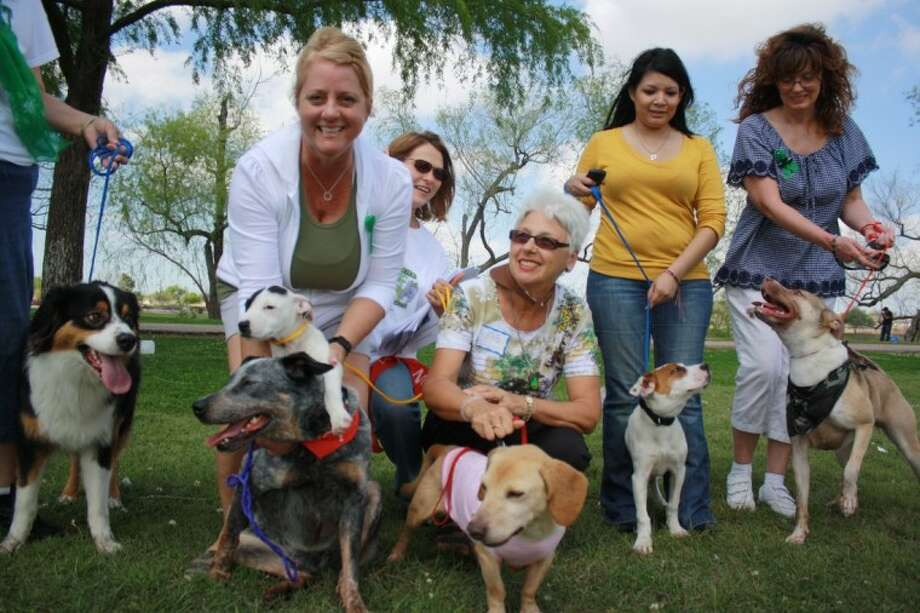 Members of the volunteer group, Pasadena Poodle Patch, took an opportunity to show off some of the city's rescues on a recent Saturday afternoon. Bernise Mountain mix Bob, lab mix Domino, cattle dog Bloo and dachshund mix Gloria are just some of the city's rescues currently available for adoption through the Pasadena Animal Control and Adoption. For more information, call the city facility at 281-991-0602 or visit at 5150 Burke; or call Susan Anderson with the Pasadena Poodle Patch at 281-998-7320.