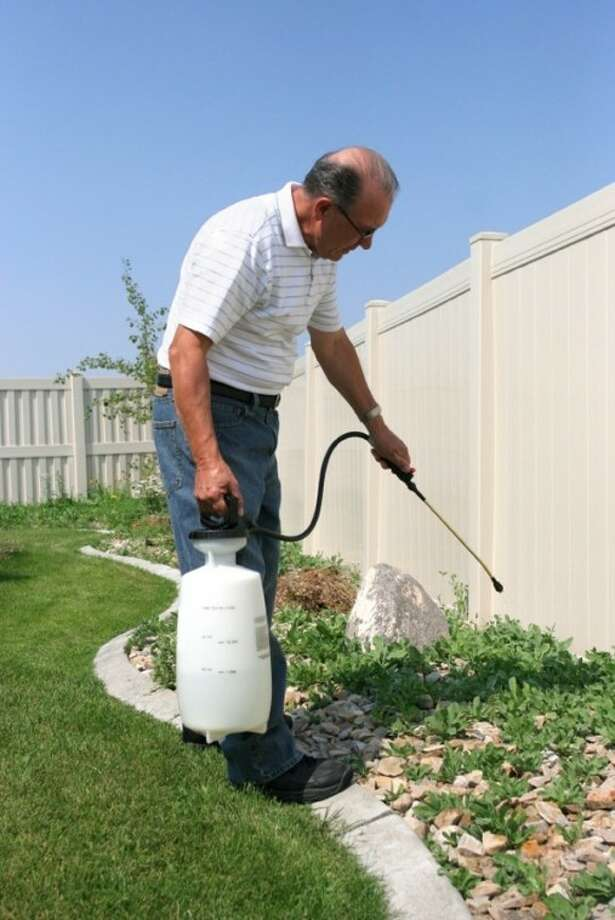 For larger areas, use a tank sprayer with a concentrated herbicide formula.