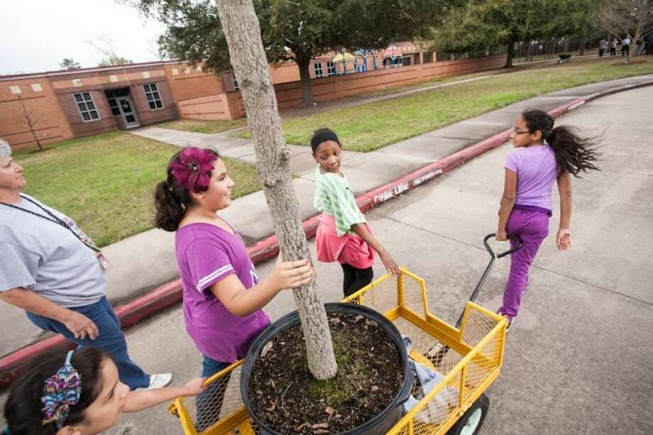 Oak Forest Elementary fifth grade students work together to bring a Sawtooth Oak tree to a location they dug outside of their school as a celebration of their tenth annual Arbor Day tree planting Feb. 21.