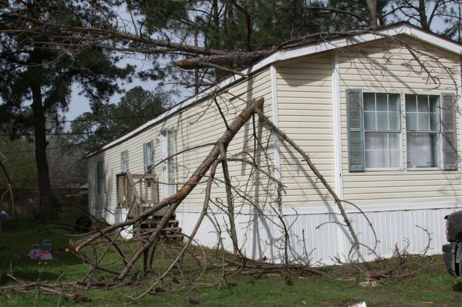 The top of a dead pine tree rests against a home in Victoria's Village after high winds blew through Friday morning. No one was injured and estimates of damage were not available.