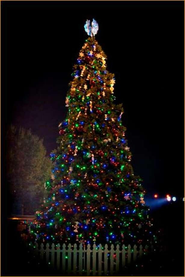 Flocked christmas trees houston texas