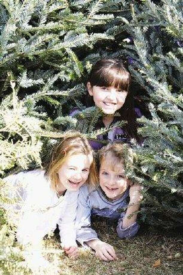 Crawling through the entrance tunnel into the rooms within a Christmas tree fort, a trio of young builders near West University Place's Colonial Park display the glee of their efforts. / @WireImgId=1096478