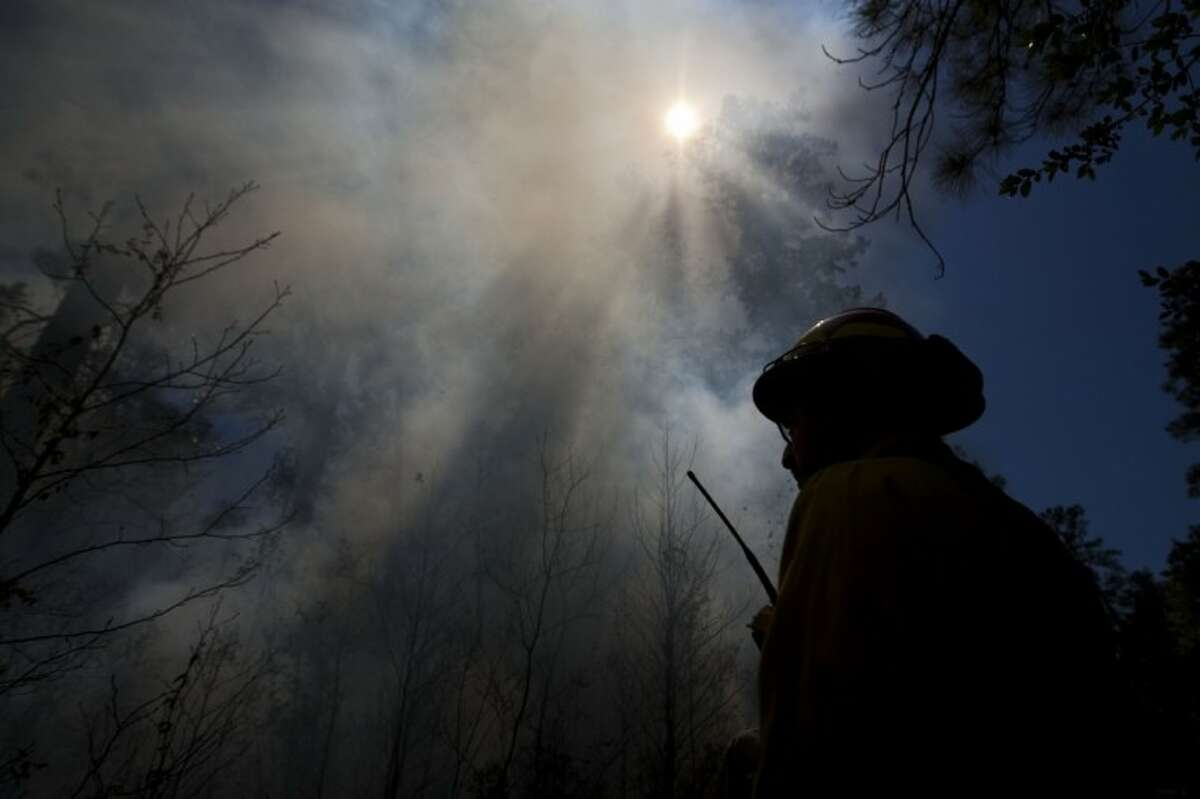 A Texas Forest Service firefighter watches over a fire line during a prescribed burn in the W.G. Jones State Forest Monday. The burns are expected to be completed Tuesday.