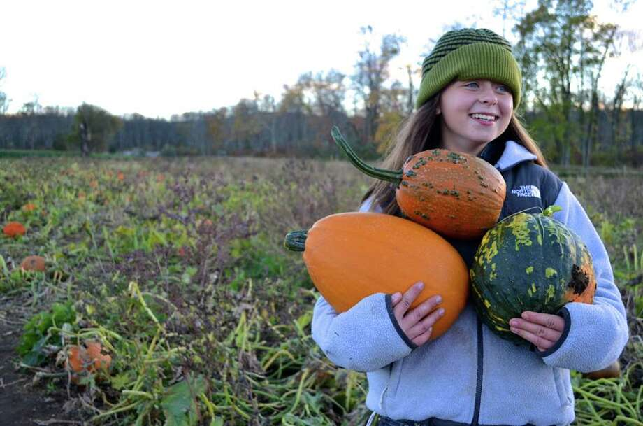 Corn maze at Castle Hill Farm - Newtown, fall seasonHalfway through the maze, climb up on our wagon observation deck and take a look over the top of the corn at our farm. On October 28, November 3 and November 4, head over at night for the special flashlight mazes. Find out more.