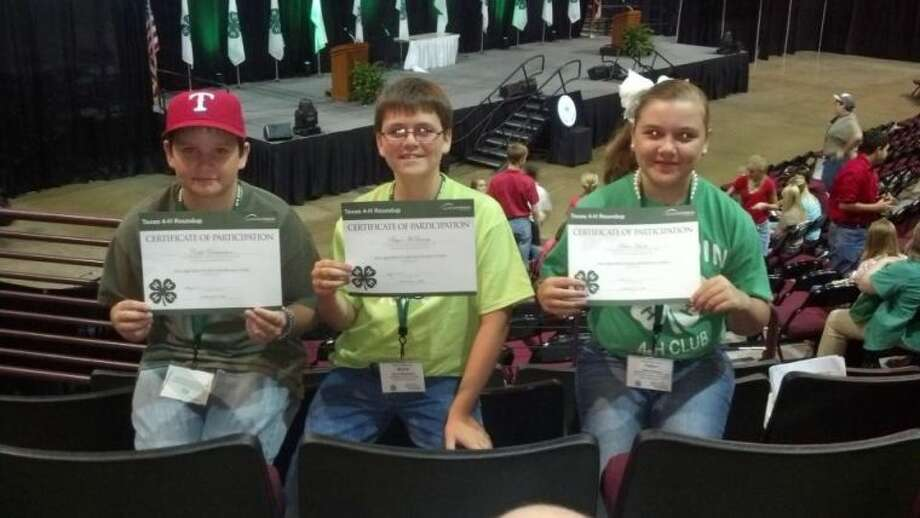 Hardin 4-H team placed fifth overall in the ag products identification competition at the 2013 Texas 4-H Round Up in Bryan Monday, June 10. They are Bryce McQueary, Caleb Richardson, and Fallon Hanks. Photo: SUBMITTED PHOTO