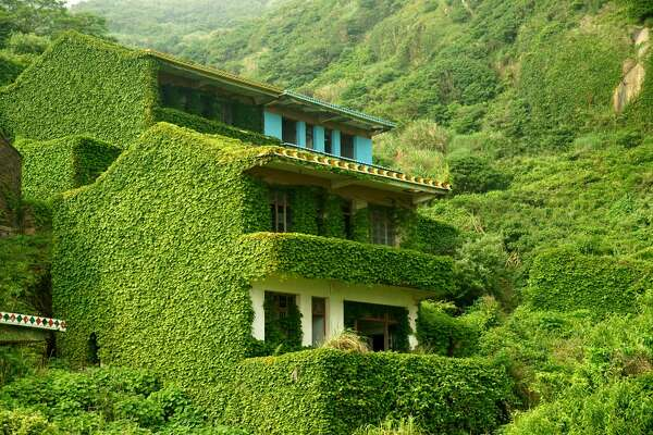 ZHOUSHAN, CHINA - MAY 31:  (CHINA OUT) Houses are covered with creepers at a deserted village on Shengshan Island on May 31, 2015 in Zhoushan, China.  (Photo by VCG/VCG via Getty Images)