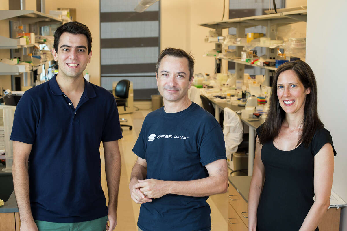 Rice University researchers Amirali Aghazadeh, Richard Baraniuk and Rebekah Drezek have invented a technology that could identify hundreds of bacterial pathogens simply, quickly and at low cost using a single set of random DNA probes.
