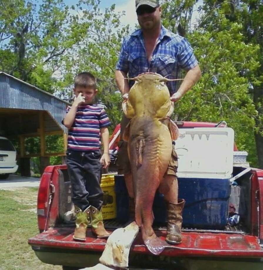 Kenefick Man Catches 76 Pound Yellow Catfish From Trinity River Houston Chronicle
