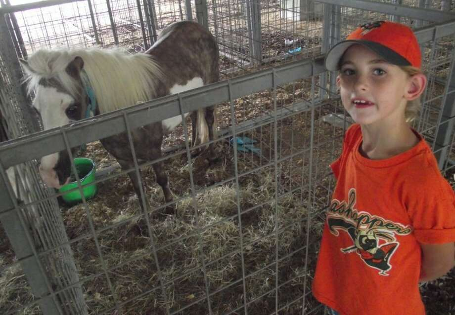 Six-year old Emma Copeland made friends with one of the mini-horses available at the Houston SPCA mobile adoption event at the San Jacinto County Fair Grounds on Saturday. Emma's dad, Trey Copeland, was there to inspect some of the offerings with Jesse and Mindy Neuman, owners of Faith Riding Stables in Coldspring. Photo: CASSIE GREGORY