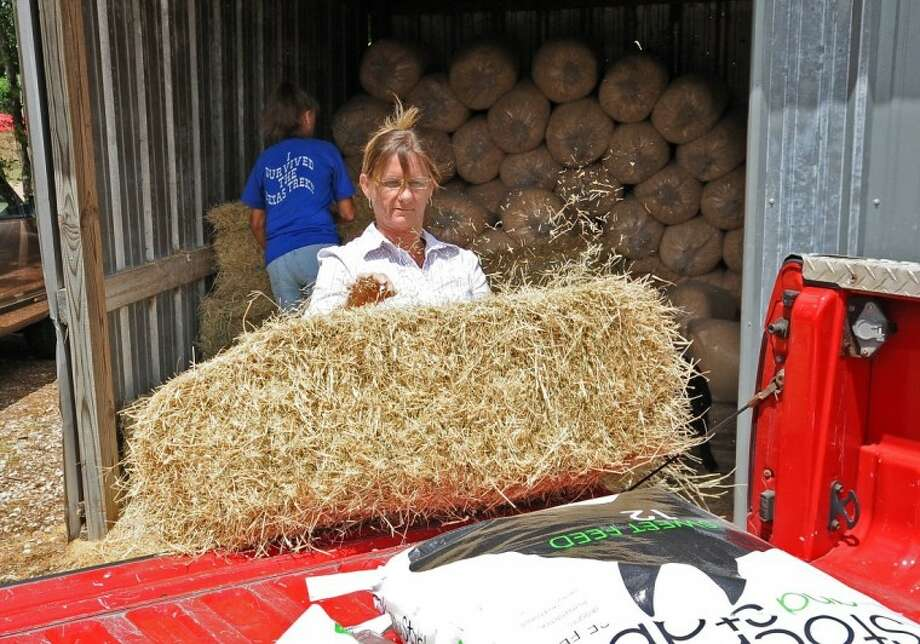 Store owner Debby Shawhan loads a bale of hay for a customer at D&D Feed Store in Pearland.