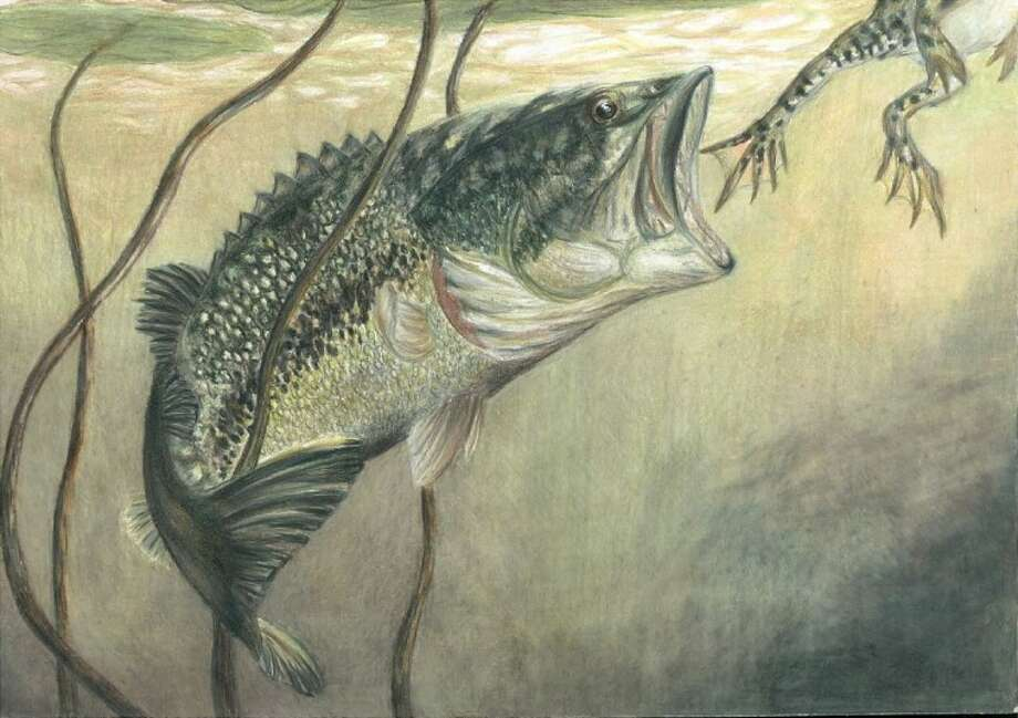 The fish art of Gigi Barker, of Village Mills, Texas, took first place in the Grade 10-12 division of the Wildlife Forever State-Fish Art Contest. Bonnie Leung, of Spring, received an honorable mention.