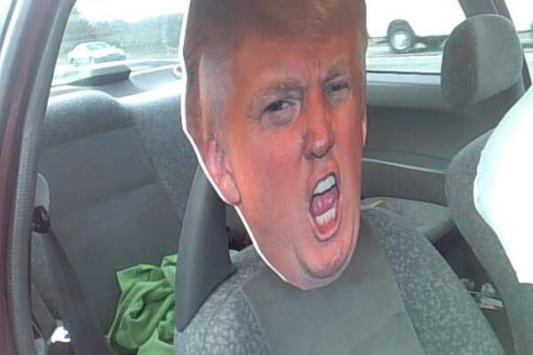 A Washington state driver was pulled over on Sept. 27, 2016, for having a cutout of Donald Trump's head and driving with him in the HOV lane.  