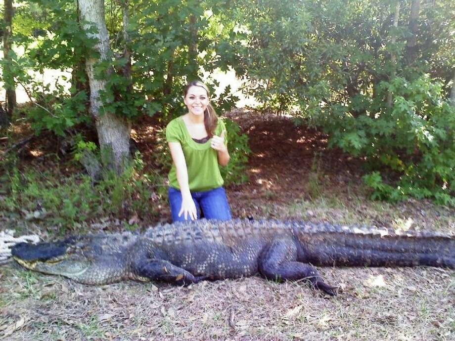 After devouring a couple of family pets, a 12-foot, 1,100-pound gator was shot and killed in Shepherd, San Jacinto County. Normally the alligator stayed in Coley Creek on Blue Wolf Ranch, but the drought caused the animal to seek water in a stock pond. It was there it came into contact with the pets. The animal was destroyed with the consent of Texas Parks and Wildlife. Pictured with the alligator is Racheal Daughterty, the 17-year-old daughter of Ray Daugherty, owner of Blue Wolf Ranch.