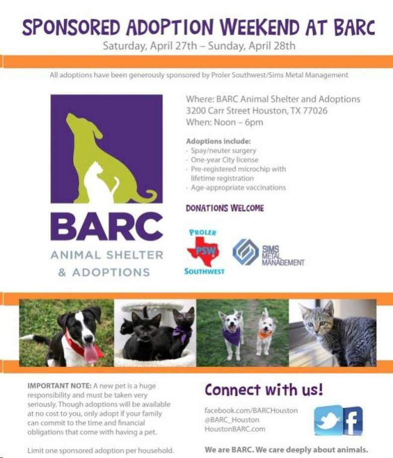 Sponsored pet adoption this weekend