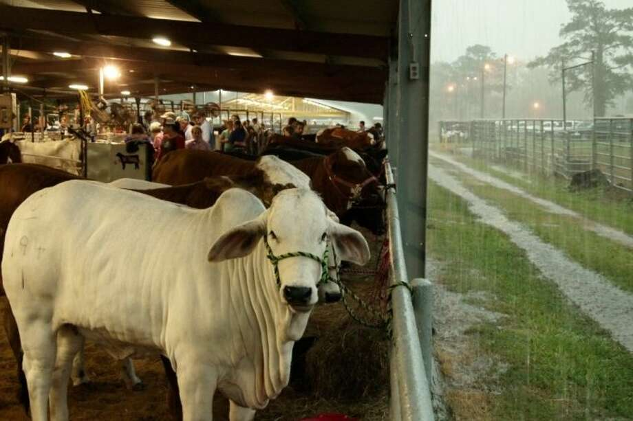 The rains on Friday, May 10, provided a little extra challenge for contestants as they moved under what little shelter was available from the downpour.