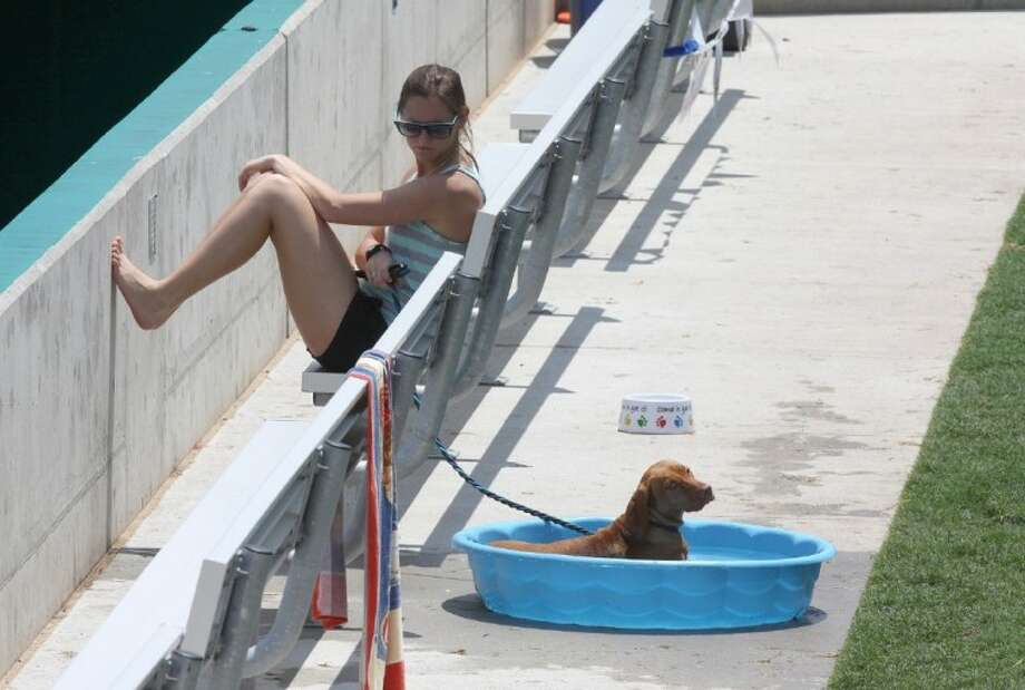 """Kelli Layden of Sugar Land enjoys the game with her dog, """"Walli"""" as he cools off at the Sugar Land Skeeters Bark in the Park at Constellation Field on Saturday,. Photo: ALAN WARREN"""