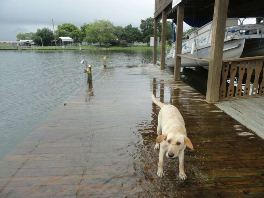 Docks and boat houses around Lake Houston are beginning to flood July 13.