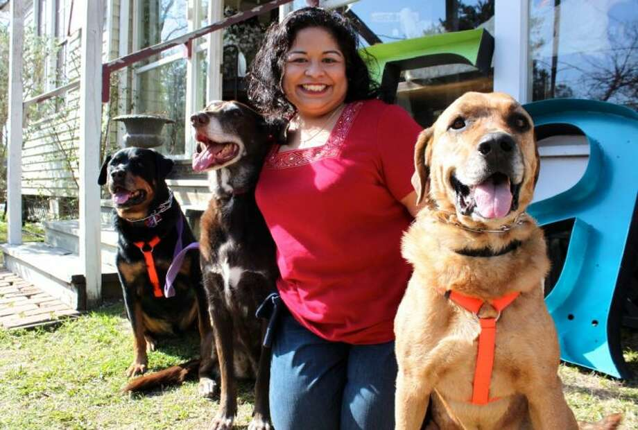 Amy Venegas, owner of FURever Home, Inc. and volunteer with Adopt a Rescued Friend in Spring, with (right to left) her foster Chow/Labrador mix Chance, Chocolate Lab/Weimaraner mix Emily and her Rottweiler Gabriel.