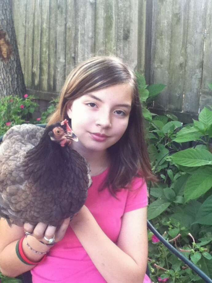 Isabella Acuña, a sixth-grader at Wilson Montessori, is taking her fight for urban chickens to City Council members.