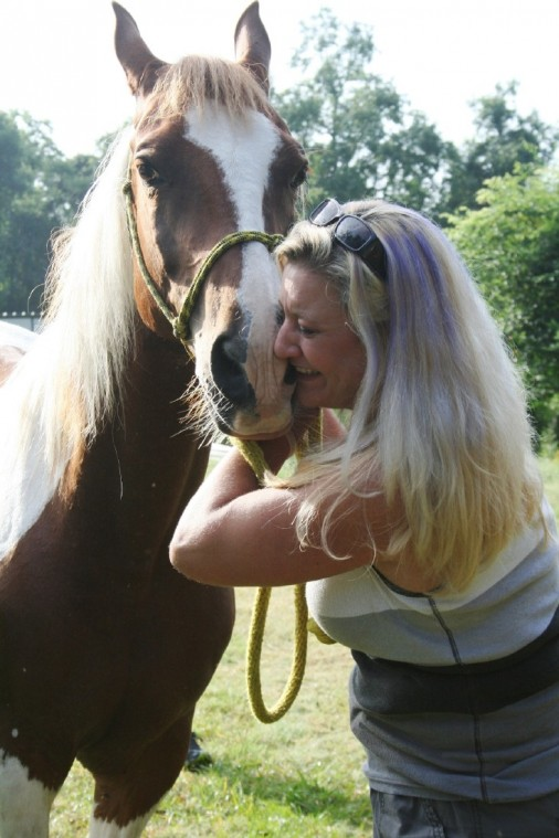 Craigslist Com Houston >> Craigslist Ad Leads To Recovery Of Stolen Horse Houston Chronicle