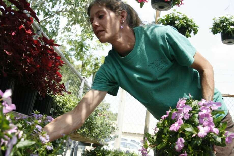 Kingwood Garden Center Employee Carrie Cleveland, Of Crosby, Re Arranges  Plants At The