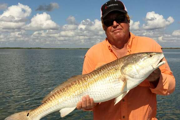 A trophy-sized 38-inch redfish that blasted out of Emmords Hole to give James Miller of Flour Bluff a fishing fight to remember is displayed by the angler before the bull red was returned to the water.