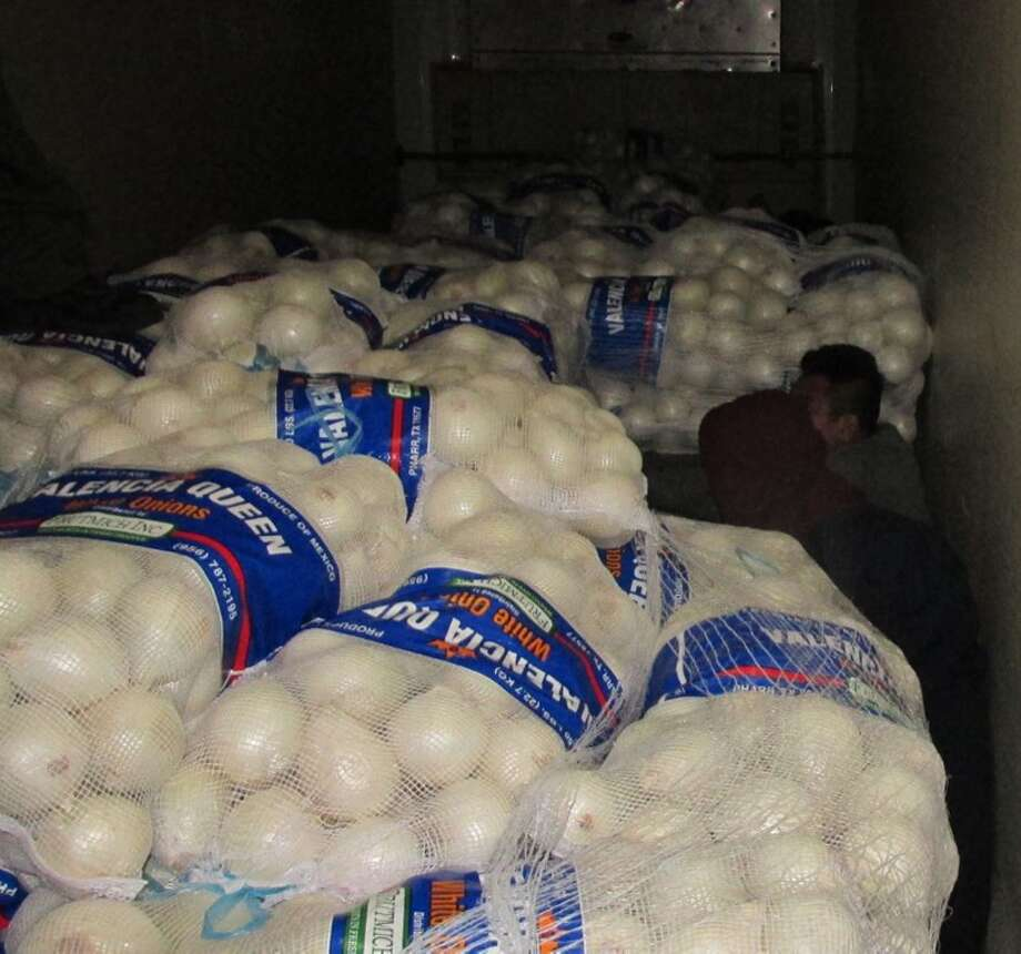 The U.S. Customs and Border Protection agents in Falfurrias found 14 people in a tractor-trailer full of onions. Photo: U.S. Customs And Border Protection