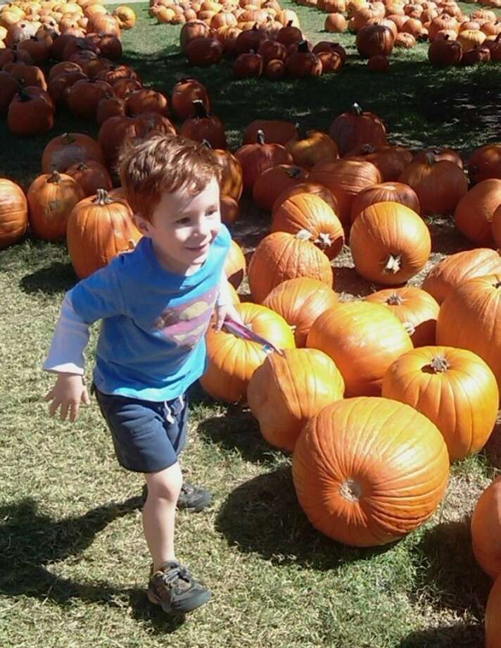 Ernest Boon, of the Heights, enjoys the Pure Pumpkin Patch at St. Luke's United Methodist Church. The 11th annual event will return to the church, 3471 Westheimer, Sept. 30 through Oct. 31. Photo: Submitted Photo