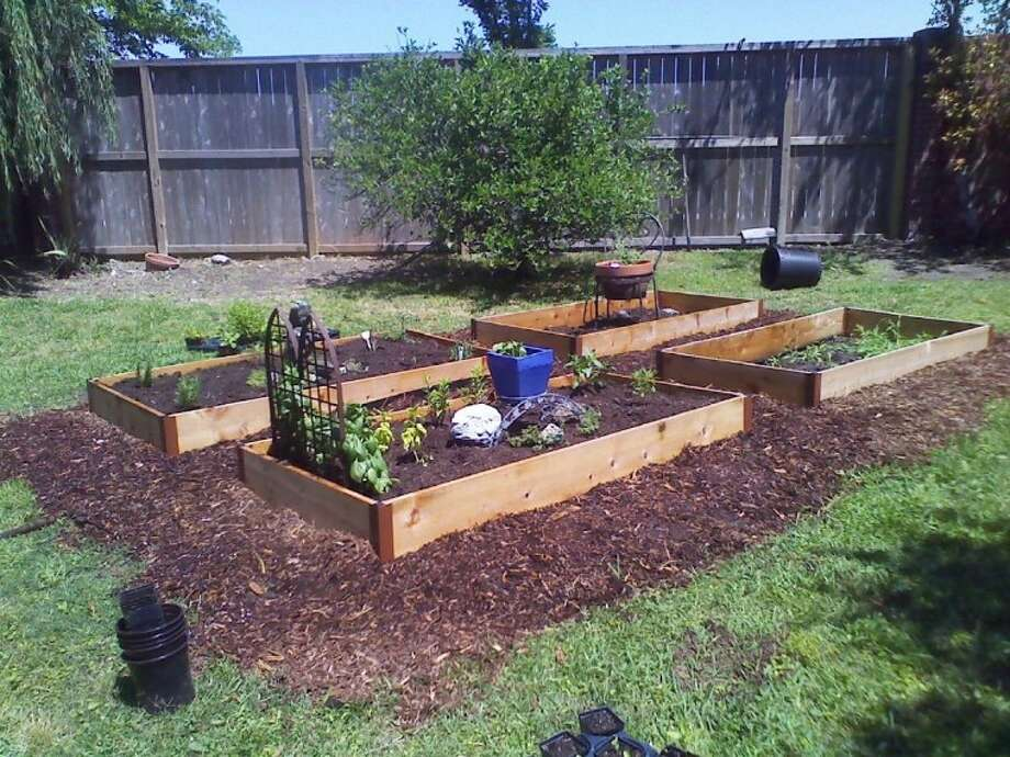 Small, raised beds can be used to make a big dent in your produce bill.