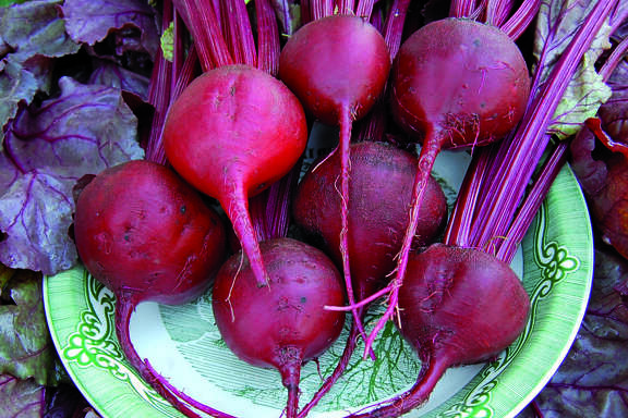 Beets are spectacular in the garden and on the dinner table.