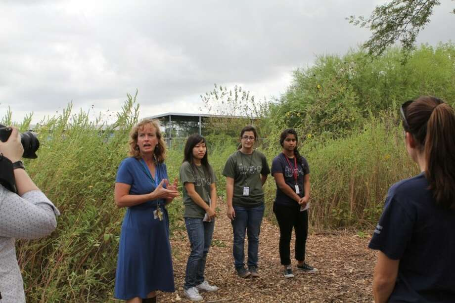 Westside High School teacher Carolyn Klein, left, and students Christina Seo, Reyhaney Tirgar and Jasmine Melgar lead a tour through the Gulf Coast prairie site their class has restored. Westside is among HISD schools that will benefit from a new collaboration with the National Wildlife Federation's Eco-Schools USA program