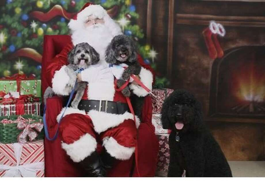 Residents from around the community are encouraged to bring their four-legged friends to join in the holiday spirit to get their picture with Santa Claus, all for a good cause at the annual Christmas in the Park celebration Dec. 1.