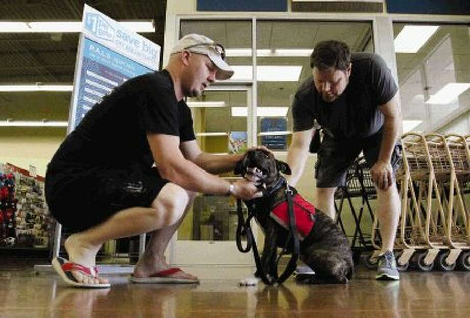 Levon Ingram praises his pit bull terrier mix Sarge with Shane Baker during a training session at Petco in The Woodlands Wednesday. The company, Train a Dog, Save a Warrior, helps train sheltered dogs into service dogs to be companions with soldiers with psychological disabilities. Go to HCNPics.com to view and purchase this photo and others like it. / Conroe Courier
