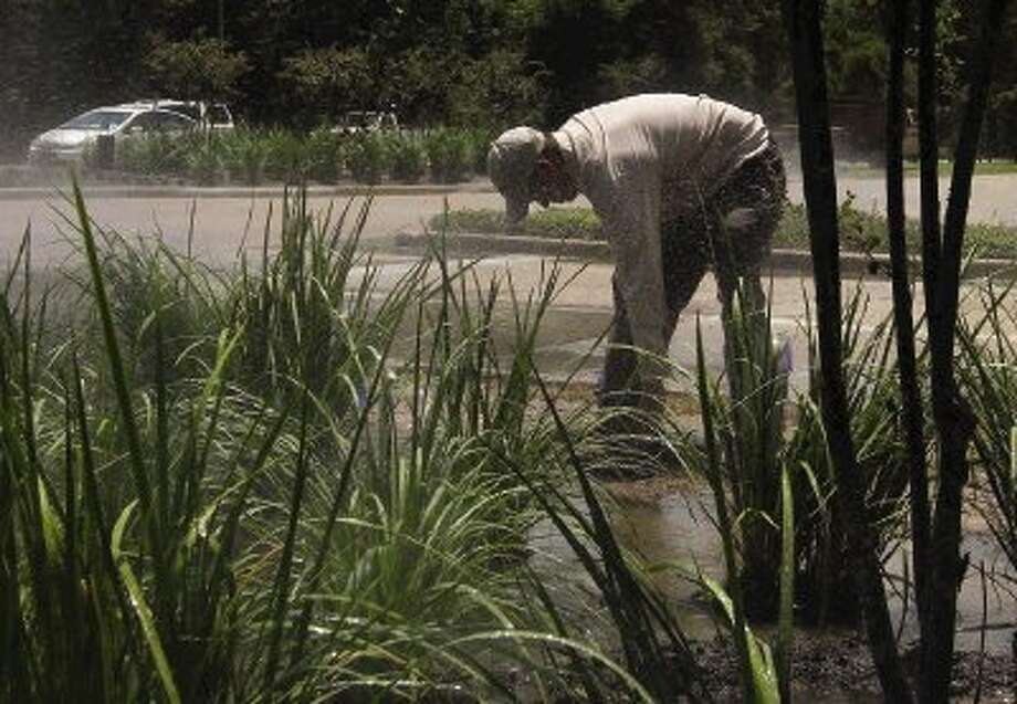 A worker turns off sprinklers after water plants in a median at Grogan's Mill Road and Sawmill Road just after noon Monday. Photo: Staff Photo By Jason Fochtman / Conroe Courier