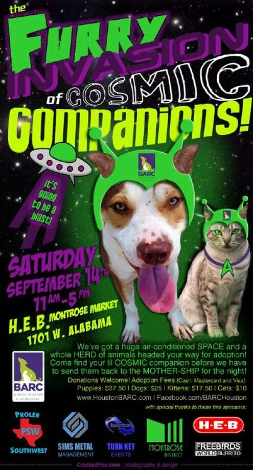 BARC hosts Cosmic Companion Mega Pet Adoption event Sept. 14