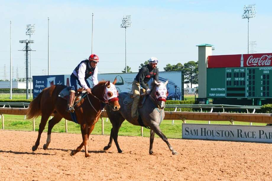 A pair of horses run down the stretch of Sam Houston Race Park earlier this week.