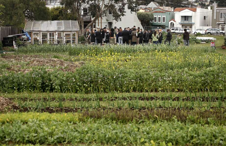 SF panel unanimously backs school on site of urban farm
