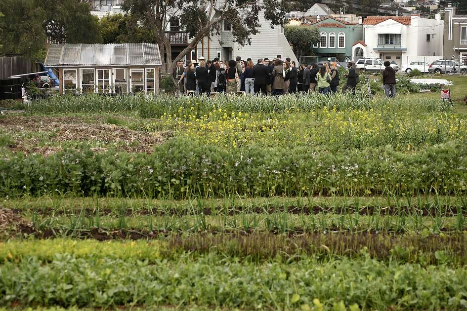 Dozens gathered at the Little City Gardens in San Francisco, Ca. on Wednesday April 20, 2011, as San Francisco Mayor Ed Lee signed into law the new agricultural zoning ordinance that amends the Planning code to encourage edible gardening and urban farming within the city and county of San Francisco.