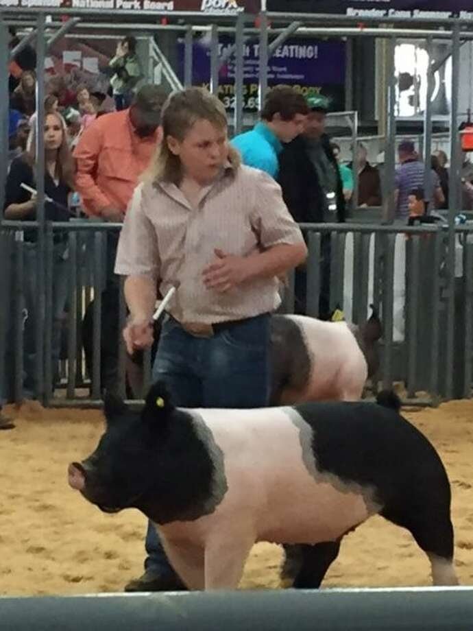While the Montgomery County Fair has yet to begin this year, one Conroe teenager already won a grand champion title for his pig. Photo: Contributed Photo