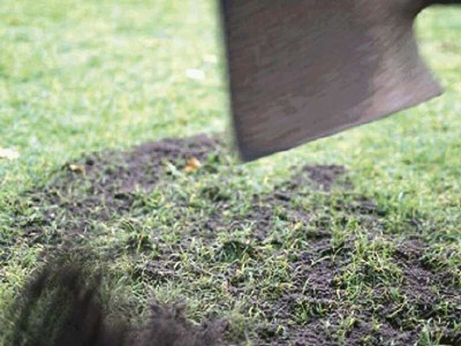 Lay compost or organic matter out in piles, then spread with a shovel or scoop.
