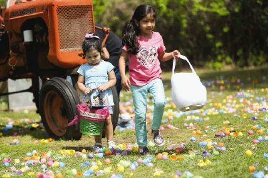 Camilla and Mia del Aguila, of Conroe, search for eggs during the 11th Annual Easter Egg Hunt & Easter Vendor Market on Saturday at 7 Acre Wood. Photo: Michael Minasi