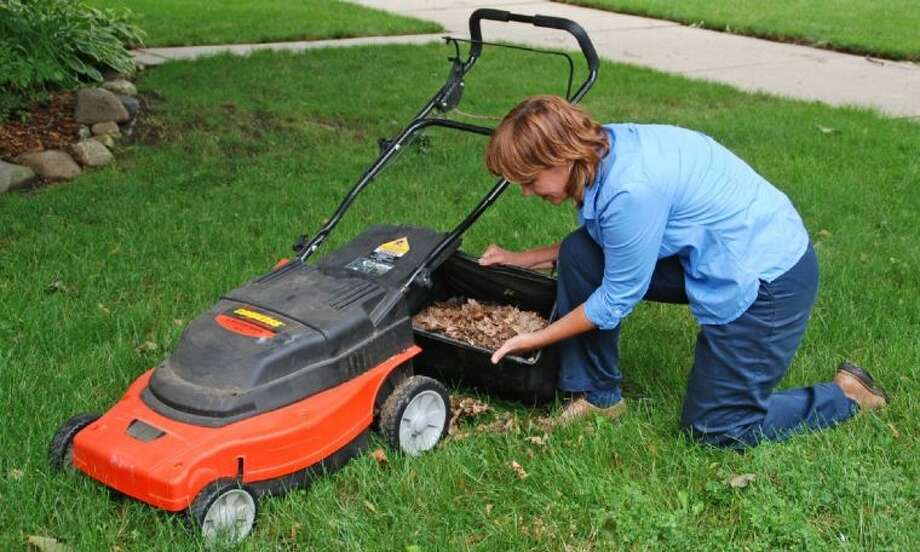 Shredding fall leaves with a mower and spreading a layer over the soil in the garden will conserve moisture and insulate the roots of perennial plants.