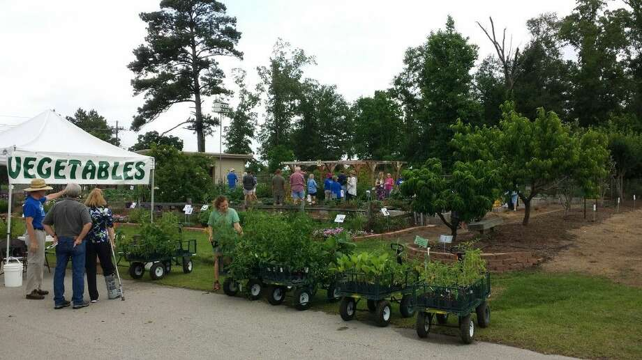 "The ""Open Gardens Day"" on May 9 at the Montgomery County AgriLife Extension facility was a huge success."