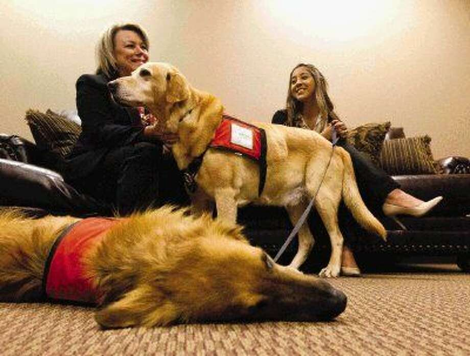 Pam Traylor, left, scratches the chest of her nine-year-old labrador retriever Ranger as Jocellyn Camrillo look on at the Lee G. Alworth Building on Thursday. Ranger, along with his new canine partner Chaco, a two-year-old German Shepherd mix, helps assist the primarily children in court testify, along with other service dog duties within the Montgomery County District Attorney Office. Photo: Jason Fochtman