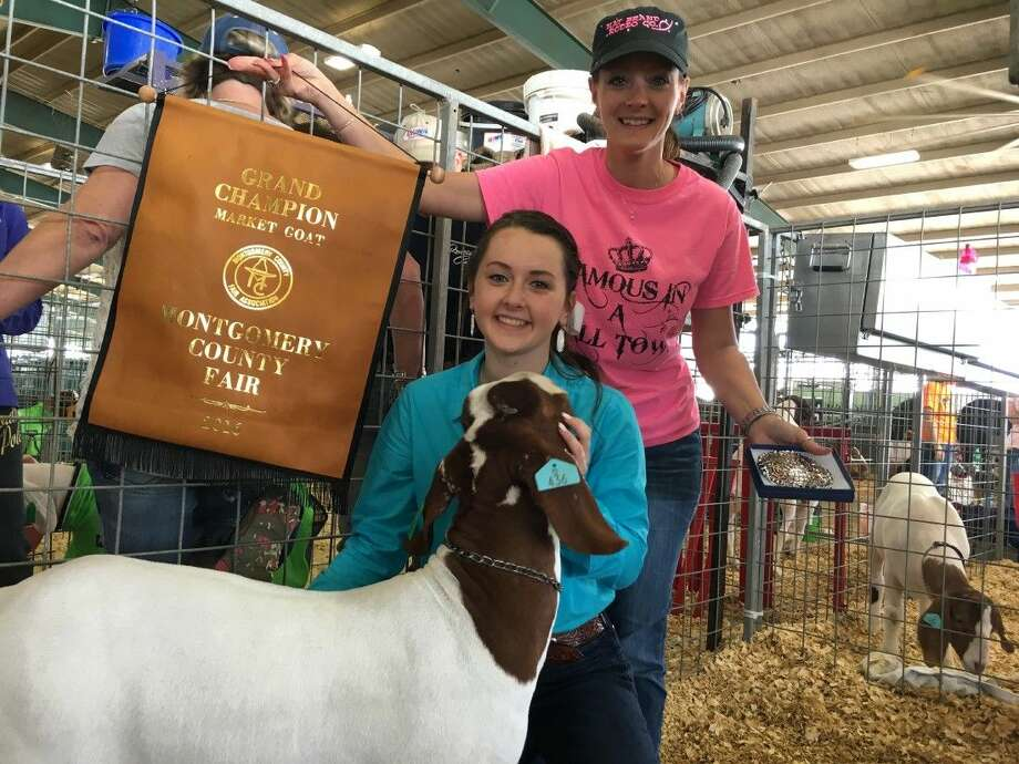 The Montgomery County Fair's 2016 Market Goat Grand Champion, Kylee Houston is a 17-year-old senior at Porter High School. She is also the 2014 grand champion and the president of her high school FFA chapter.