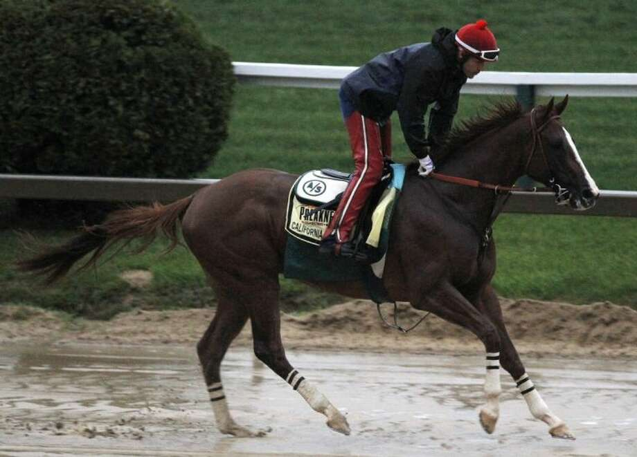 Preakness Stakes favorite California Chrome gallops in the rain under exercise rider Willie Delgado at Pimlico Race Course. Photo: Garry Jones