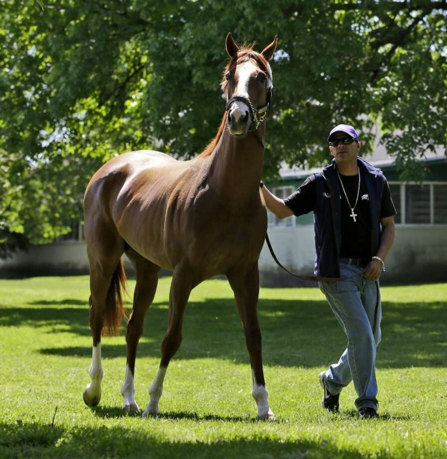 Exercise rider Willie Delgado walks Triple Crown hopeful California Chrome after they arrived Tuesday at Belmont Park in Elmont, N.Y. The Belmont Stakes is scheduled for June 7. Photo: Seth Wenig